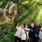 Dinosaur museum at Odysea