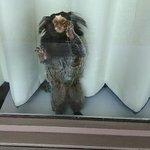 Foto di Motel 6 Spring Hill Weeki Wachee