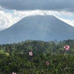 Billede af Leaves and Lizards Arenal Volcano Cabin Retreat
