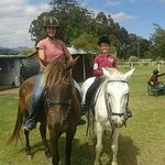 A lovely ride on well-schooled horses. Harry is a perfect ride for young riders