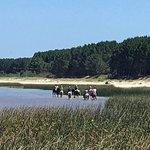 Riding on La Plata beaches