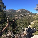 San Jacinto Mountain from Top of Tram
