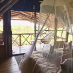 Photo of Pezulu Tree House Game Lodge