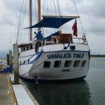 Foto de Schooner Whale's Tales
