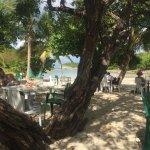 terrasse du restaurant sur la plage
