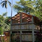 Foto de Yelapa Oasis