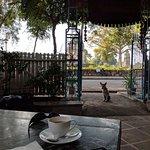 Raja's Cafe Photo