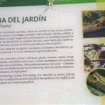 Photo of Jardin Botanico Historico La Concepcion
