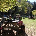 Photo of Aran Park