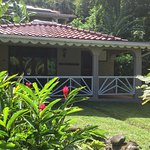 Our cottages have been positioned to offer privacy and serenity.