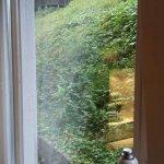 Foto Hotel Weinberg-Schlosschen
