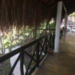 Foto de Dos Ceibas Eco Retreat