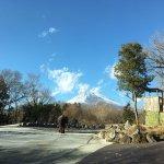 Photo of Fuji Safari Park