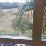 Foto de Homewood Suites Ocala at Heath Brook