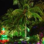 Billede af Aseania Resort & Spa Langkawi Island
