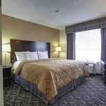 Photo of Comfort Inn and Suites Ambassador Bridge