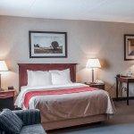 Photo of Comfort Inn Mississauga