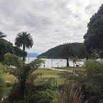 Φωτογραφία: Picton Sound