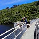 Photo of ZEALANDIA Sanctuary