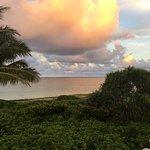 Donna's Detours - Tours of Oahu Foto