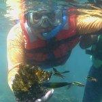 Con un trozo de coral vivo
