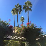 The Scottsdale Resort at McCormick Ranch Foto