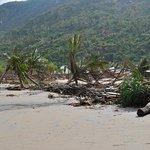 Jungle Beach VietNam-bild