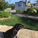 Photo of Puerto de Luna Pet Friendly and Family Suites