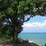 Foto de Hosanna Toco Resort