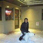 Even a polar bear
