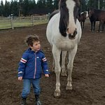 Levi and Jen. The horses are so happy and gentle!