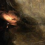 Linville Caverns Foto