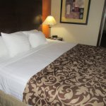King Bed, Best Western Inn and Suites, New Braunsfels, Texas