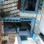 Photo of The Blue House Guest House Jodhpur