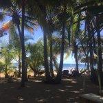 Photo de Fenix Hotel - On The Beach