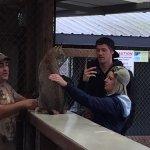 West Coast Game Park Safari Foto