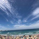 Seal Point main beach