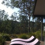 The comfy recliners on the spacious deck with the fabulous view of bushland
