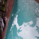 The pool is so cloudy you cannot see the bottom