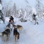 Valokuva: Lapland Hotel Pallas