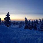 Foto de Lapland Hotel Pallas