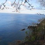 Foto de Baia dos Golfinhos