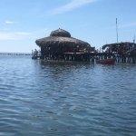 Photo of Pelican Bar