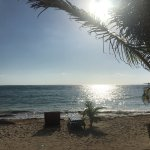 Billede af Mayan Beach Garden