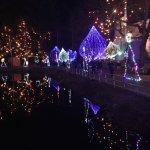 Shrine pond lights