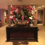 阿爾布斯大酒店照片