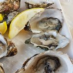 excellent oysters and beer