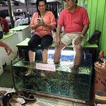 Fish cleaning people's toes
