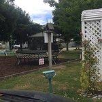 Photo of Amber Kiwi Holiday Park Christchurch