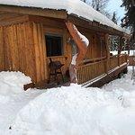 Foto Homestead Guest Cabins